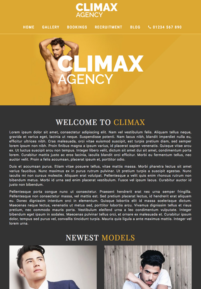 Climax - Website Template