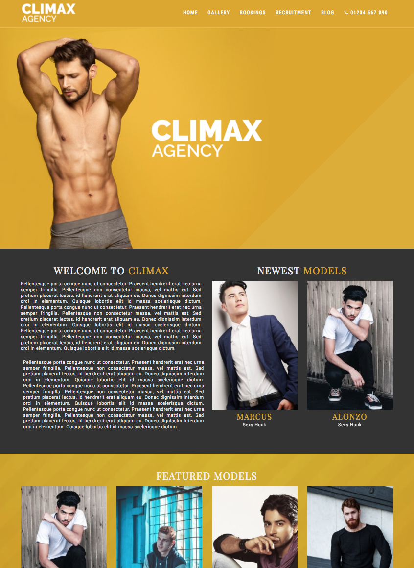 Mockup of our Climax Template