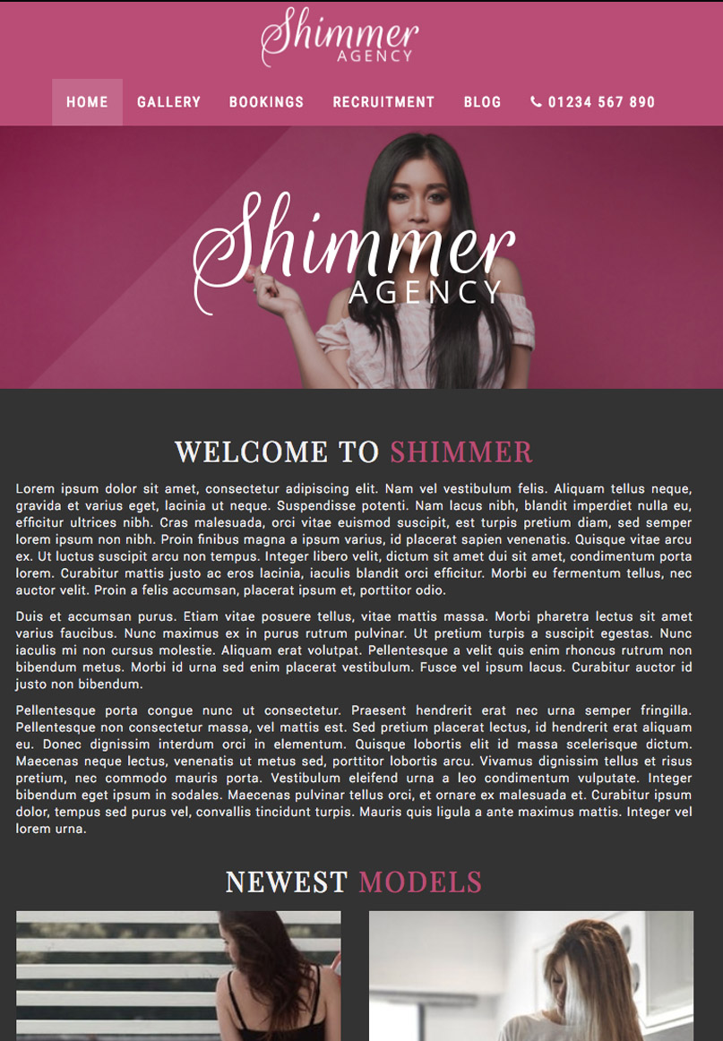 Shimmer - Website Template